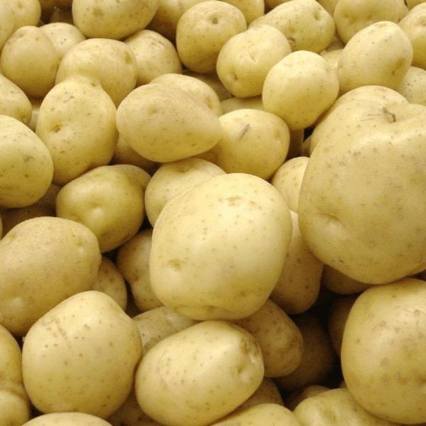 Pomme de terre Agata sachet 2,5kg